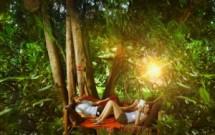 Un aiuto nella giungla: il Forum della Psicoterapia di OPL