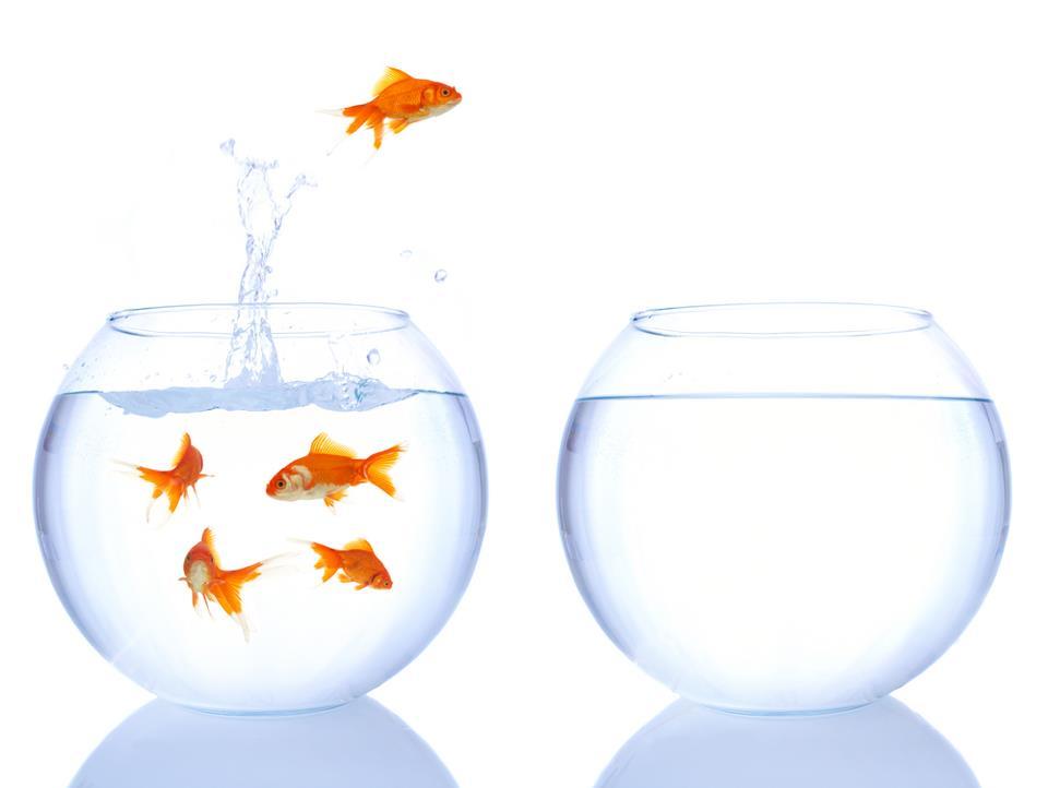 Lavoro e psicologi: nuove opportunità?